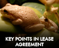Key points in Bama Reptiles Lease agreement