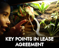 Key points in Living Vivarium lease agreement